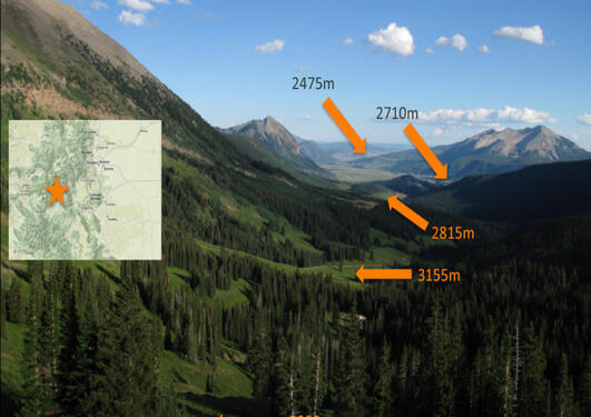 A view of the Rocky Mountains, Colorado with orange arrows marking the elevations of experimental sites and an inset map of western US