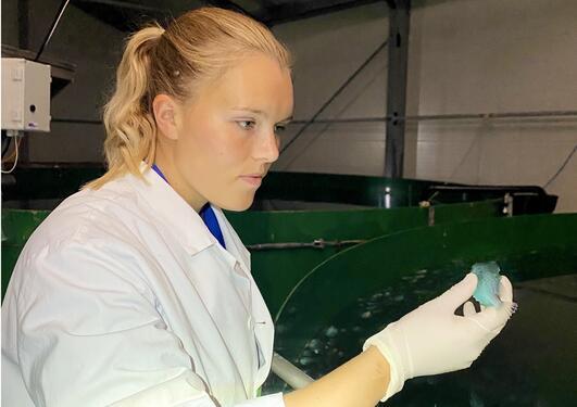 Anna Nygård Johansen og en rognkjeks