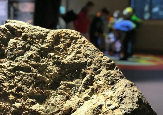 Bilde av sandstein