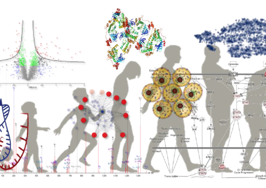 Analyzing Complex Biomedical Data to Improve Patient Care