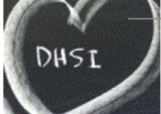 Logo for DHSI