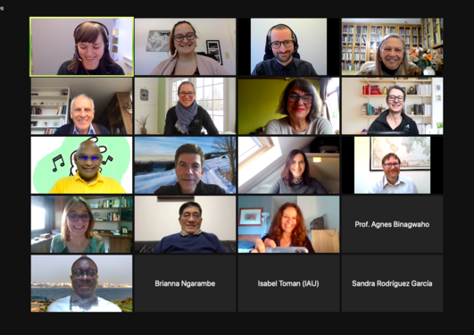 Screen shot of Zoom meetings with the experts