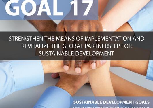 SDG illustration - hands