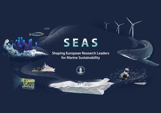 Grafikk med marine dyr og marin teknologi