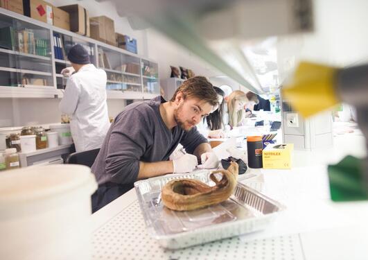 Student på lab