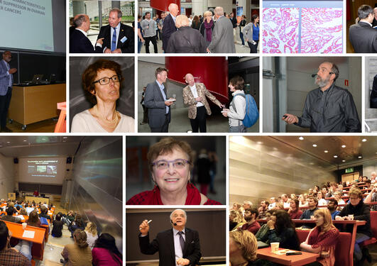 Collage of photos from the CCBIO seminars.