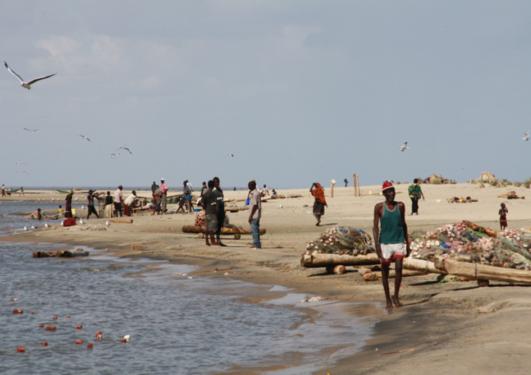 SMÅFISK MED STORT POTENSIALE: Betre utnytting av fiske i tørre regionar kan få mykje å seie i land sør for Sahara. Professor Jeppe Kolding er førsteforfattar på ein FN-rapport som konkluderer med at ein bør satse på fisk i tillegg til landbruk.