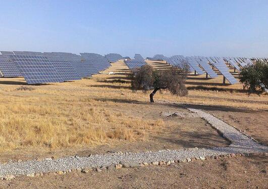 solar panels in dry landscape