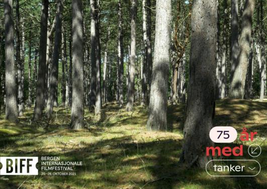 SOLUTIONS, bilde av skog, 75 år med tanker-logo i høyre hjørne, BIFF-logo i venstre hjørne