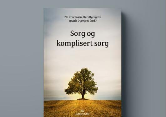 Bokomslag Sorg og komplisert sorg