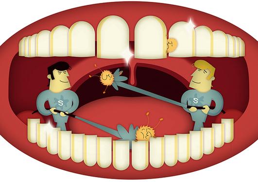 Illustrasjon av munnhule
