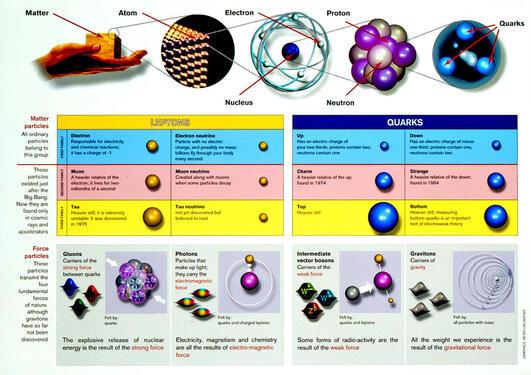 Standardmodellen i partikkelfysikk