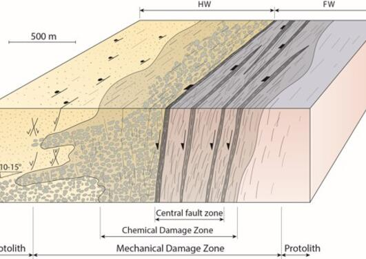 Structure and evolution of normal faults in rifts