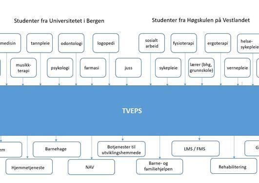 Studenter/utdanninger i TVEPS