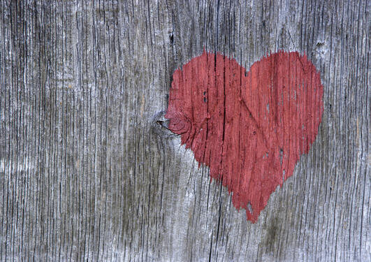 Image of heart carved into wood, used as illustration for article on the research project Cardiovascular Disease in Norway.