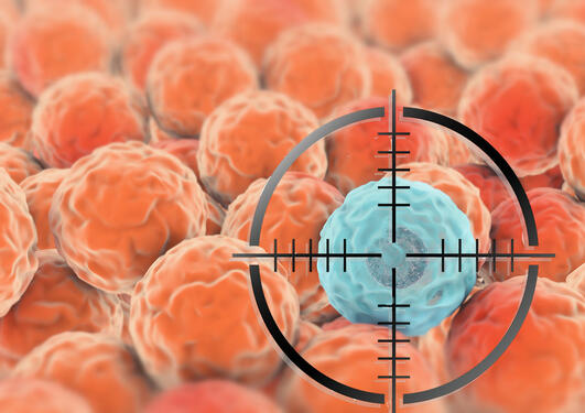 Target aim at cancer cell