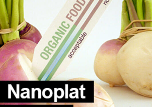 Vegetables, organic food test strip and the title Nanoplat project