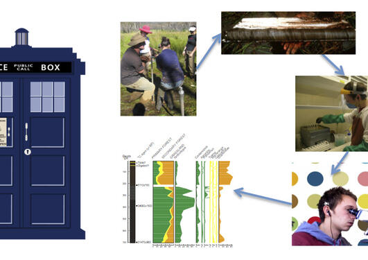 Flow chart with time represented by a tardis and a group of four photos of people working in the field and lab and a sediment core linking to a pollen diagram