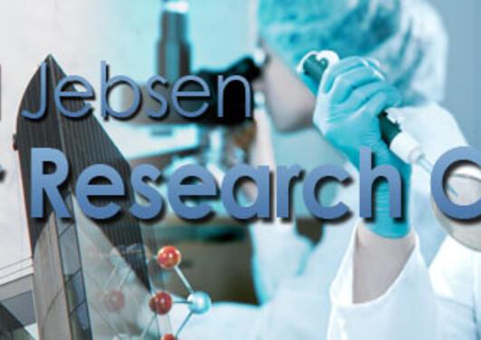 Kristian Gerhard Jebsen Brain Tumour Research Centre
