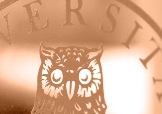 Illustrasjonsfoto av UiB emblem i orange nyanser