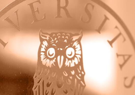 illustrasjonafoto med utsnitt av universitetslogo i oransje toner