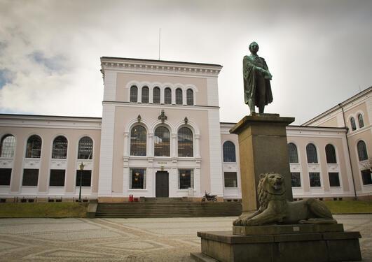 UiB museum