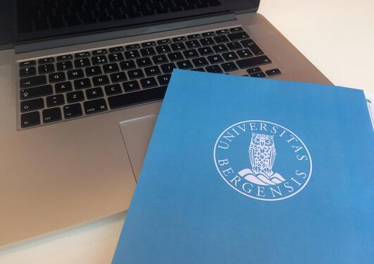 UiB Videre koordinerer etter- og videreutdanningsvirksomheten ved Universitetet i Bergen.