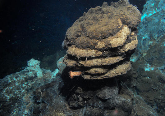 Volcanoes under the sea