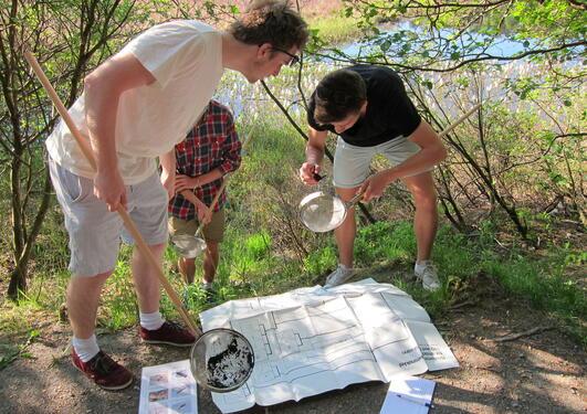 Undersøkelser av ferskvann
