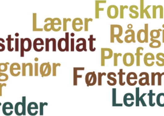 Ulike stillinger innenfor stillingskategorien forskning og utdanning