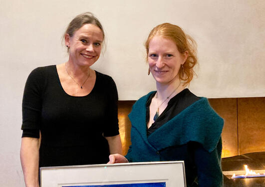 Vinneren av prisen for unge forskere 2020