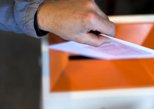 Valg til Instituttrådet 2018, gruppe B