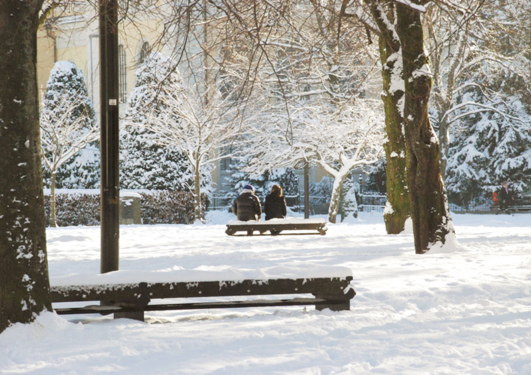 Two persons sitting on a bench with trees covered with snow around