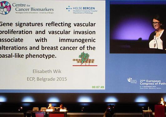 Elisabeth Wik holding a presentation at a pathology conference in 2015.