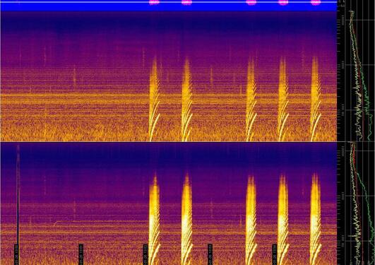 Frekvensspektra av hydrofonopptak av fem signaler fra vibratoren....