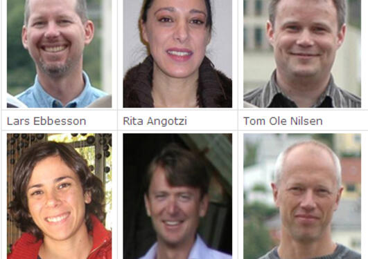 Some members of the Bergen LIFECYCLE research team.