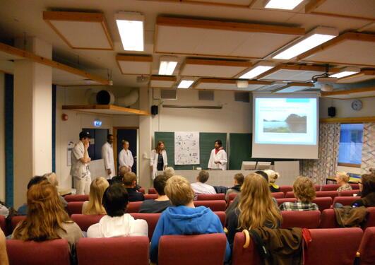 From the BIO300 final presentations 2011