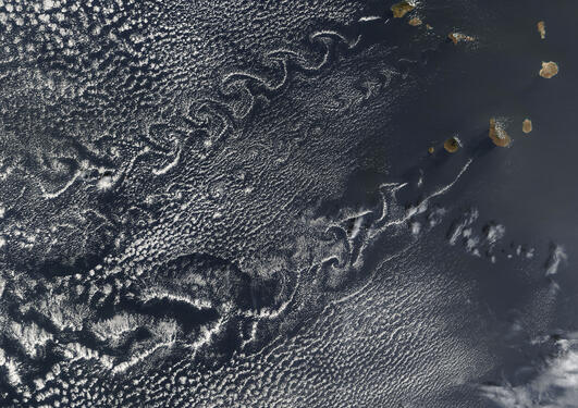 Cloud vortex streets off the Cape Verde Islands, Terra MODIS image from 5...