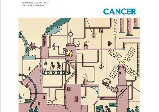 Dölle et al., Nature Reviews Cancer