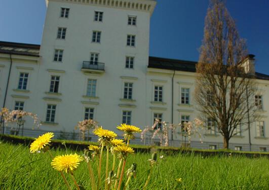 Om sommeren er hagen vår et populært møtested for studenter og ansatte.