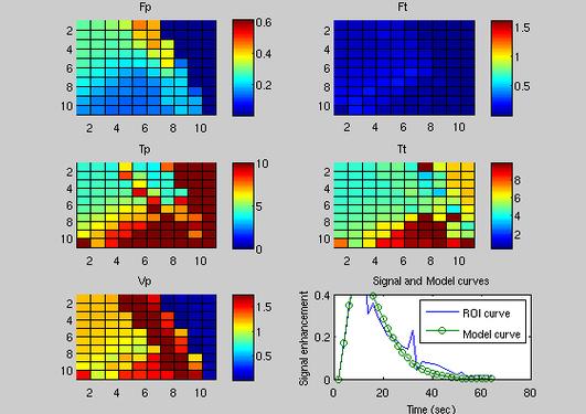 Pikselvis estimering av funksjon-parametre for en (in-silico) nyre-fantom....