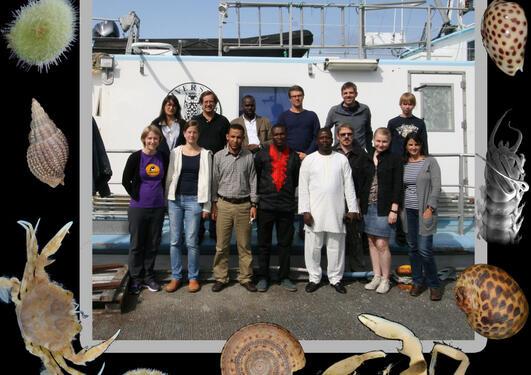 Deltakere fra ni land i work-shop på Marinbiologisk Stasjon på Espegrend