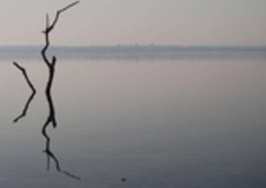 Institutt for geografi arrangerer konferanse om vannets betydning for sosial...