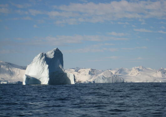 Icebergs around Greenland