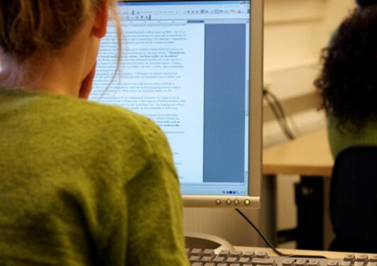 Dataarbeidsplassen skal tilrettelegges med hensyn til belysning og ergonomisk...