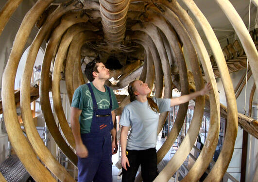 Marielle Bergh og kollega Adam Kurz inne i blåhvalen de har renset. – Den er...