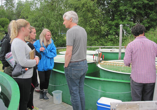 Frede Thingstad explains their mesocosm experiment.
