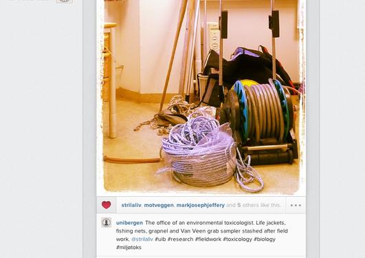 Miljøtoksikologi på instagram