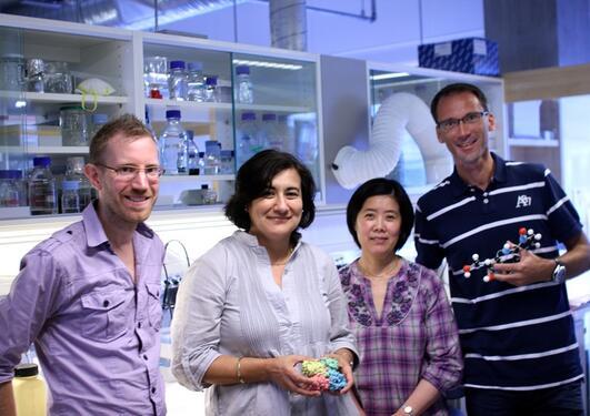 Forskergruppen til Aurora Martinez jobber med sjeldne, genetiske sykdommer....