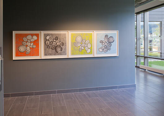 Ellen Karin Mæhlum: Planktonportretter, 2008-10.